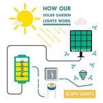 100 DEL lumières solaires multicolores en forme de libellules par SPV Lights: les lampes solaires et les spécialistes de l'éclairage de la marque SPV Lights image 4 produit