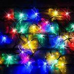 50 DEL Lumières solaires multicolores en forme de libellules par SPV Lights: les lampes solaires et les spécialistes de l'éclairage (2 ans gratuit garantie) de la marque SPV Lights image 1 produit