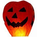 coolshiny® Chinoise lanternes volantes Sky Bougie Lampes feu pour mariage Souhaitant Parti x 10 Pcs de la marque coolshiny® image 14 produit