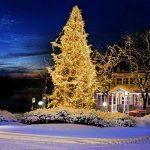 Le meilleur comparatif pour : Guirlande lumineuse exterieur 20m TOP 3 image 2 produit
