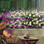 Le meilleur comparatif pour : Guirlande lumineuse exterieur 20m TOP 3 image 6 produit