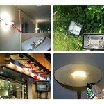 LED R7S 30 W Dimmable Ampoule À Double Extrémité J Type J118 LED Projecteur avec 250 W Halogène Ampoule Remplacement de la marque Ascen Lighting image 5 produit