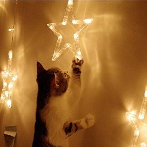 Lumières de Rideaux Elegear Guirlande Lumineuse 12 Étoiles 138 LED 220V 2M(L)x1M(H) pour Fenêtre, Mariage, Noël, Vacances, Fête, Maison(Blanc Chaud) de la marque Elegear image 0 produit