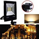Roleadro Projecteur LED 50W IP66 Imperméable Haute Luminosité SMD3030 LED FloodLight pour Jardin Luminaire 6500K Noir de la marque Roleadro image 14 produit