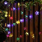 Set de 4 luminaires solaires extérieurs LED éclairage jardin papillon libellule de la marque Globo image 5 produit