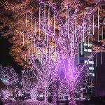 TurnRaise Lumières de 50cm 10 Tube 540LED Pluie Imperméable à L'eau de Pluie de Météores Mariage Parti Décoration D'arbre de Noël de la marque TurnRaise image 4 produit